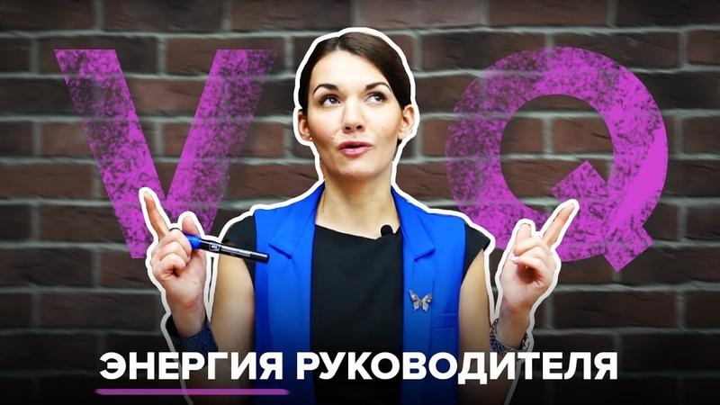 VQ жизненная энергия руководителя Замена устаревшим IQ и EQ Екатерина Москова