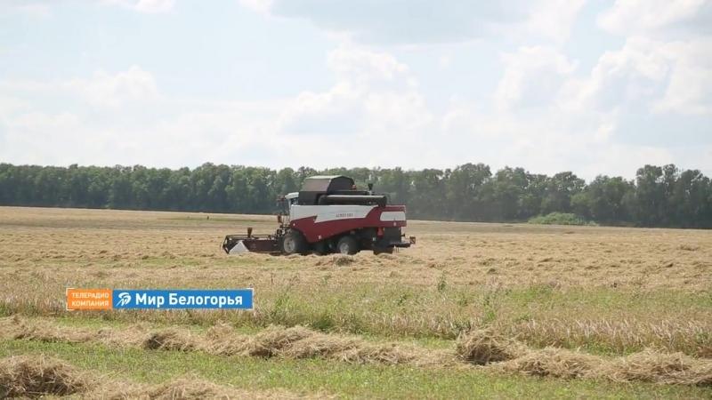 Сельхозкооператив Нива с любовью к земле