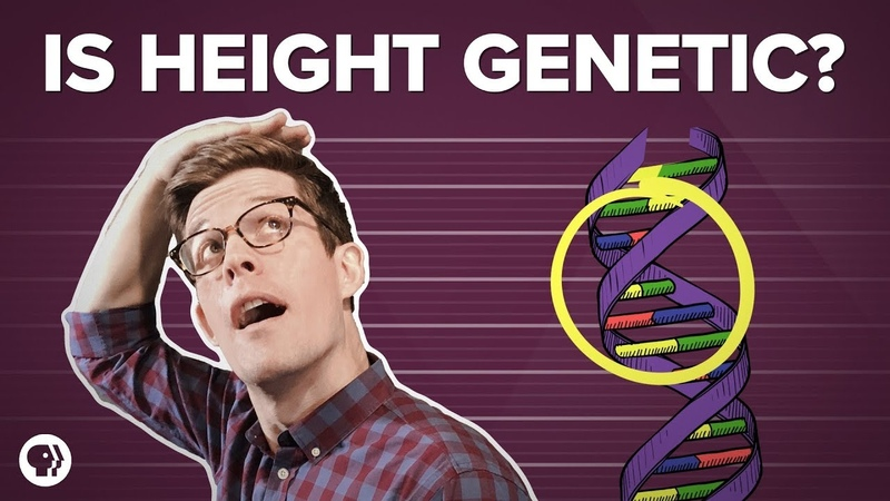 Is Height All In Our Genes?