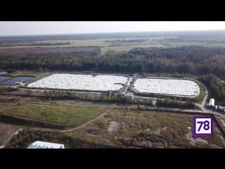 «Химический Чернобыль» продолжает пугать жителей Красного Бора
