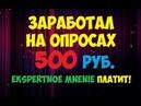 Заработал на опросах 500 рублей и вывел Экспертное мнение платит