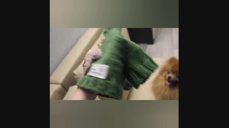 свитерсоленями своимируками хендмейд олеждадлясобак createbeauty4350 korolko
