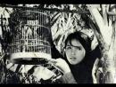 Con chim vành khuyên - Van Thong Nguyen Vu Tran (1962)