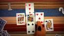 ASMR 🍄 Ролевая Игра / Любовное гадание онлайн на игральных картах