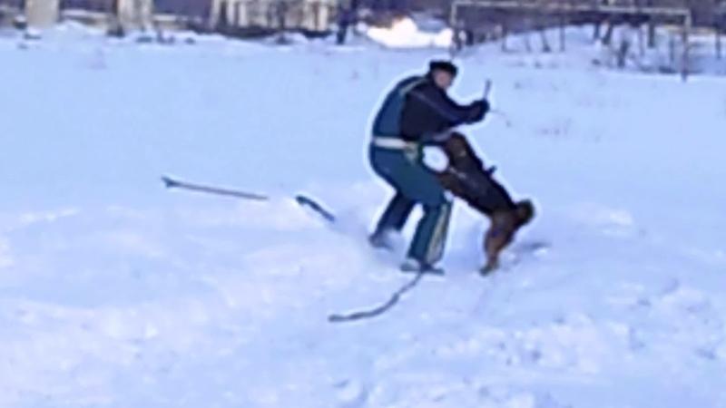 Горловка . тренинг в сугробах на старый новый год .Сильвана (на резине ) 13,01,19(3)