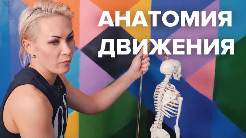 Видео-лекция Анатомия движения, Татьяна Тарабанова