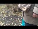 Ловят голубей для еды. Тернопіль