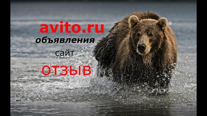 авито сайт объявлений ОТЗЫВ avito.ru