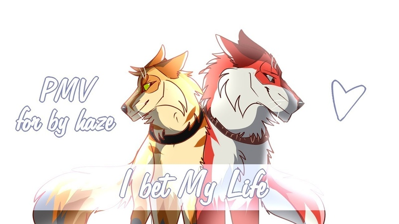 ◁ Original Characters ▷ Sheta Desert | I Bet My Life | PMV [for by haze]
