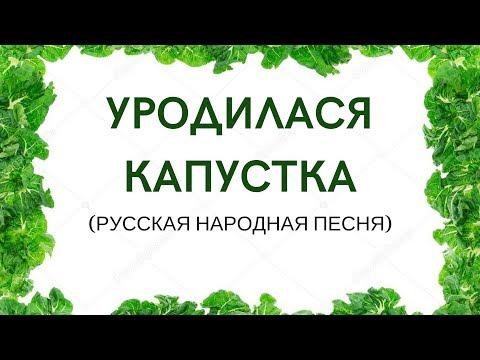 УРОДИЛАСЯ КАПУСТКА. Младшая группа детского фольклорного ансамбля ЗАТЕЯ.