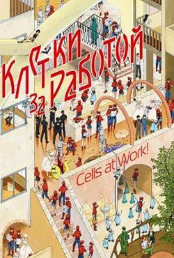 Работа клеток  11 серия - Постер