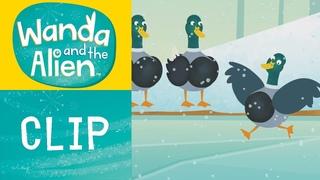 Wanda And The Alien - Tap Tap Dancing Ducks
