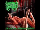 Kraanium Ten Acts Of Sickening Perversity Full Album