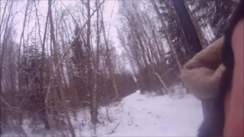 охота с гончими-беляк