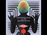 Pig vs. MC Lord of The Flies - The Compound Eye (Tsetse MixBe My Enemy)