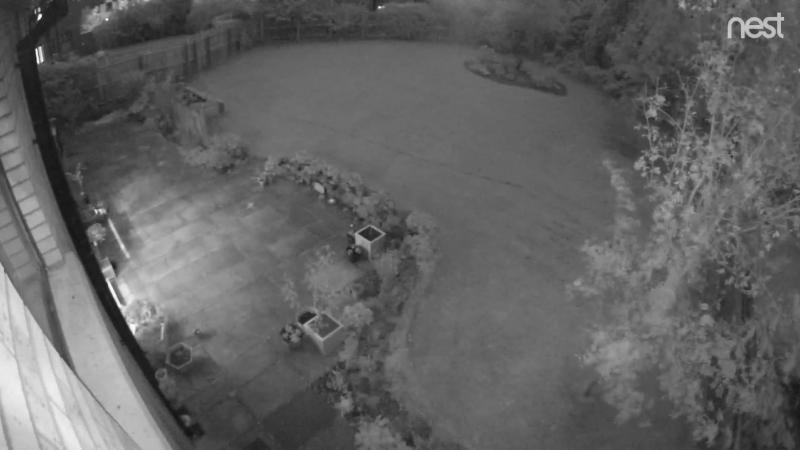 ...??...из ниоткуда в никуда..))..смотр. с 20 по 40 сек. .. снято в саду 11 октября 2018, неотредактированные кадры..