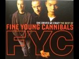 Fine Young Cannibals - She Drives Me Crazy (2018) Master Chic Mix