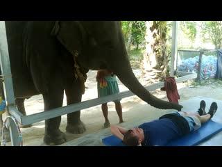 Эротический тайский массаж от лучшей массажистки😁😁