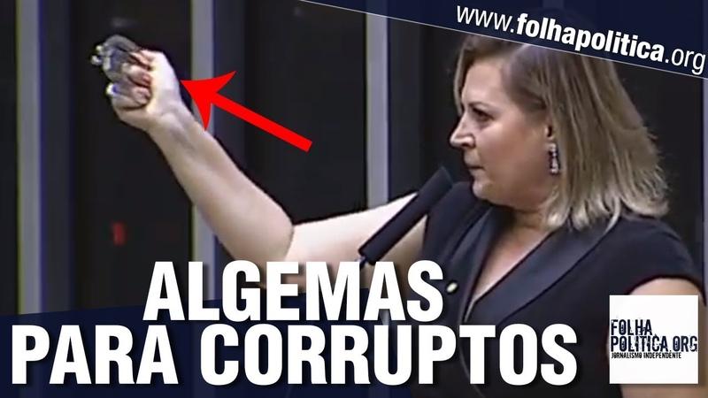 Joice Hasselmann leva algemas para a Câmara e enfrenta petistas que atacaram Sergio Moro e Bolsonaro