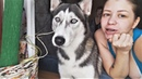 Смешные животные 2018 Смешные Собаки и Кошки Приколы с Животными Видео подборка про Животных