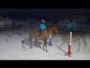 Работа на свободе с лошадью Оля и Жура