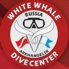 ДАЙВИНГ ЦЕНТР | WHITE WHALE | АРХАНГЕЛЬСК