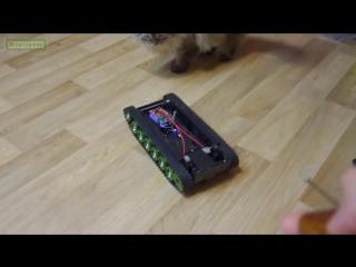 [AlexGyver] 📷Простой робот с камерой своими руками