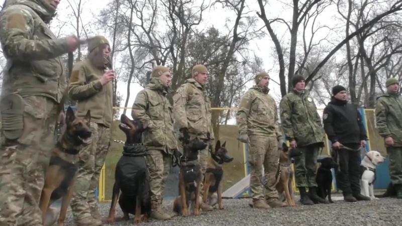 Собаки Національної Гвардії України