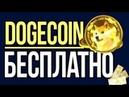 Выводим 50 Dogecoin из крана
