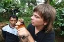 Индонезия Остров Сулавеси и Калимантан Охота на летучих мышей Добыча алмазов 13 серия