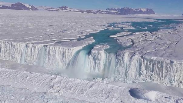 Антарктида под грифом «строго секретно»