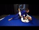 Private Lesson With Xande Ribeiro - Closed Guard