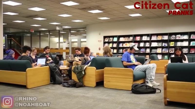 [Citizen Cat Pranks] Слушает зашкварную музыку в библиотеке - Часть 2 (Реакции)