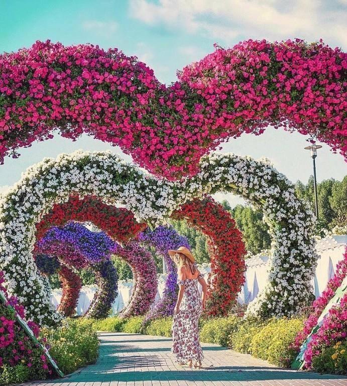 Kadınlar, çiçekleri çok mu sever? Hayır! Kadınlar çiçekleri