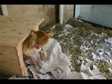 #BHVR2015 Sako Kojima, the 'human hamster'