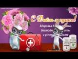 [v-s.mobi]ZOOBE зайка  Супер Поздравление с Днём Медика !.3gp