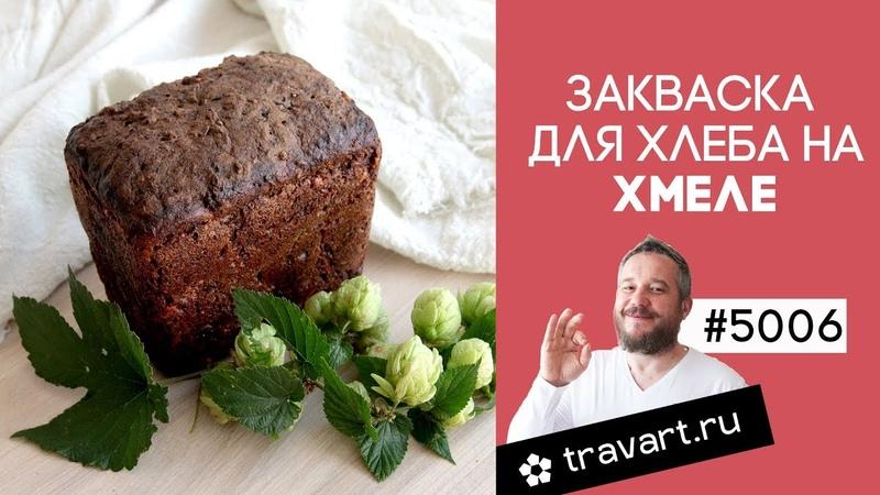 Закваска для хлеба на хмеле Как испечь хлеб без дрожжей в домашних ТРАВАРТ Животворец Андрей