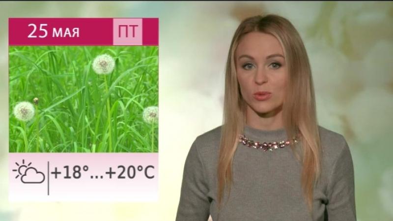 Антициклон из Скандинавии испортит летнее настроение липчанам