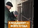 4 медведей нашли в клетках в Самаре. Что случилось?