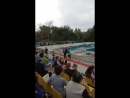 Відкриття першої черги плавального басейну в Баштанці