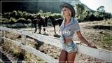 Laroz Camel Rider - Jelamsoul (feat. Riff Cohen)