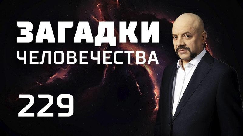 Тайное общество мстителей Страна ведьм Крымский Робин Гуд Выпуск 229 20 11 18