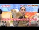 Алина с собачками на шоу в Японии