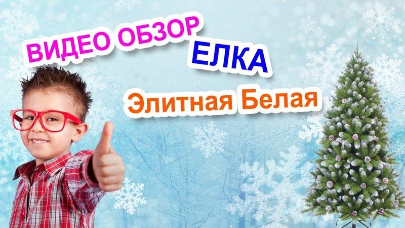 Искусственные елки в Тольятти. Видео обзор елка Элитная Белая.