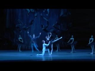 2015 Bolshoi, Swan Lake act III, Svetlana Zakharova, Denis Rodkin, Artemy Belyakov