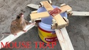 Stupid Mouse Trap With Wood Easy Saving Mouse With Water Bottle Mouse Trap In Action Amazing trap