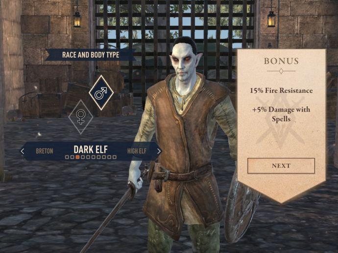 Темные эльфы в The Elder Scrolls Blades