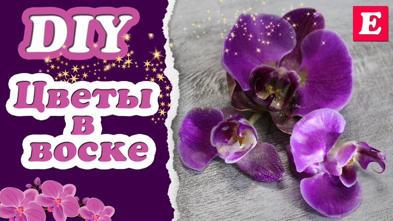 Как покрыть цветы воском * Орхидея в воске * Eva-Konfetti