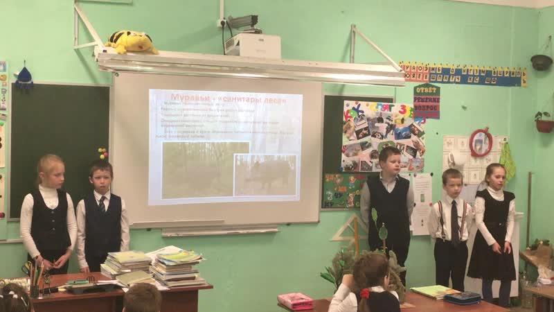 проект Рыжий лесной муравей 1 класс