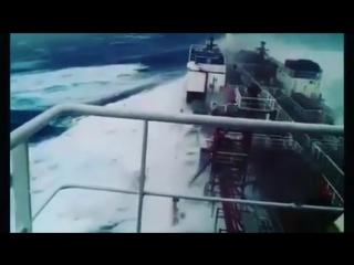 Seaman.seawoman.life_bnnl1yul07u.mp4